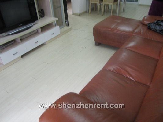 Nice 2 bedrooms apartment in peninsula for rent