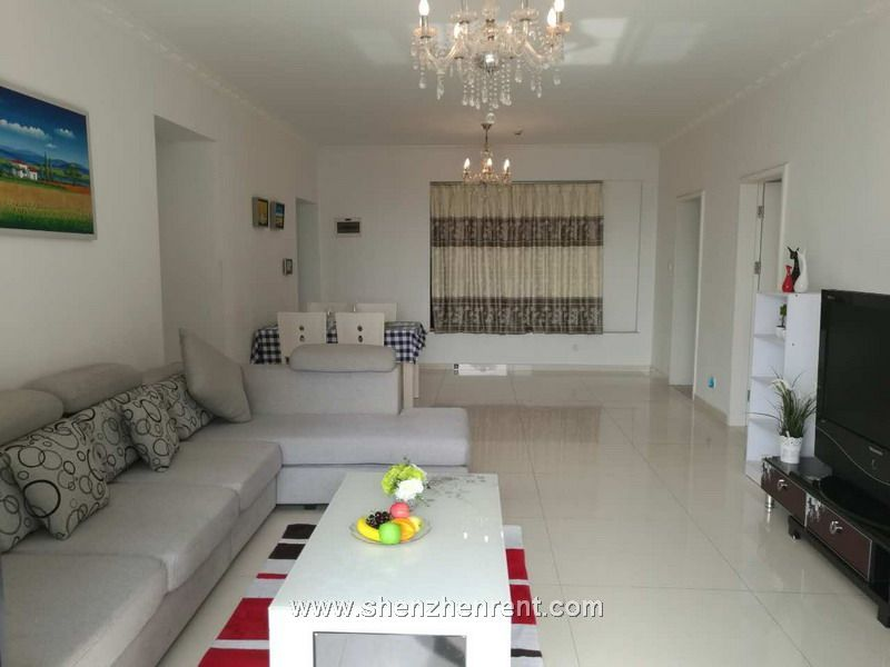Nice 4 bedrooms apartment  in shekou peninsula for rent
