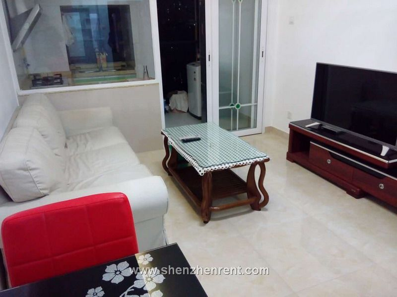 Modern 2 bedrooms duplex  in  journey  to  west  for  rent