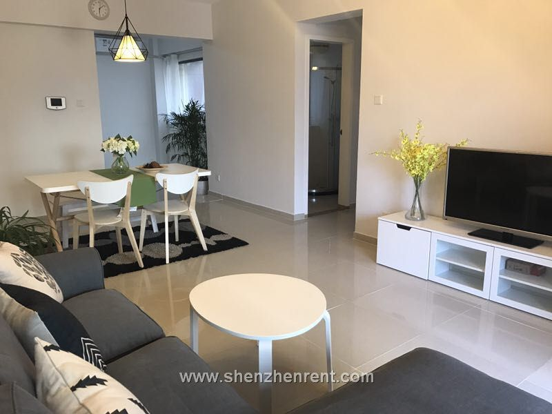 New decoration 3 bedrooms apartment in hou hai for rent