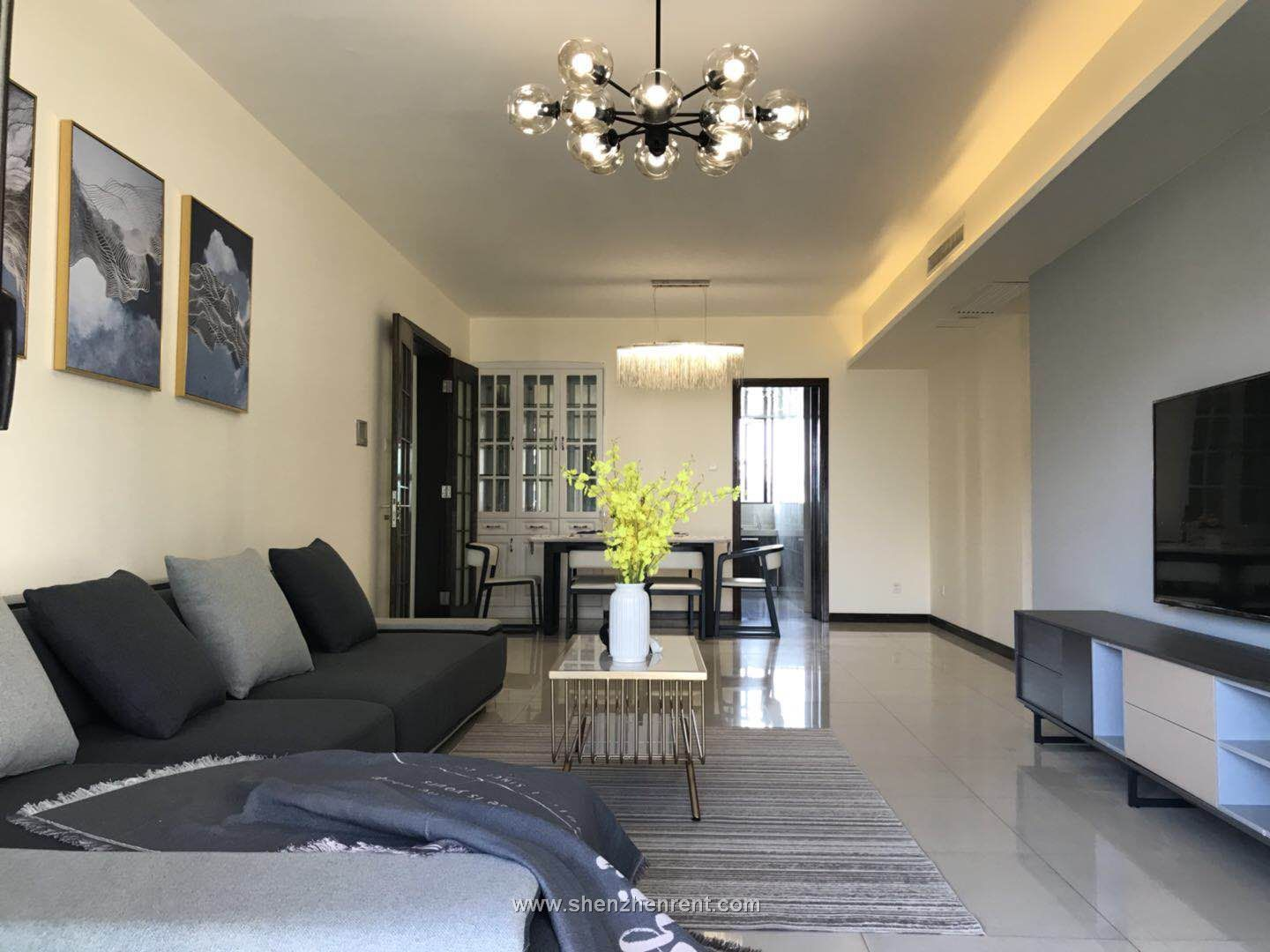 Amazing 5 bedroms apartment in shekou for rent